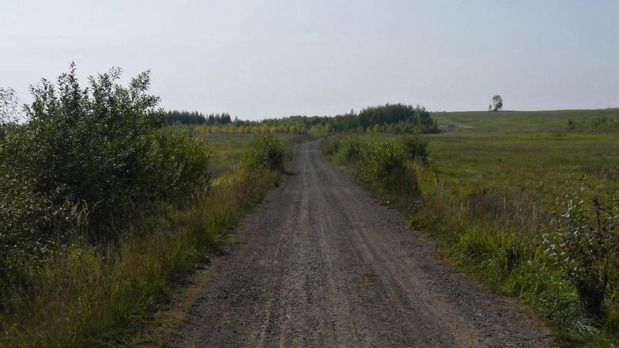 Cesta z města