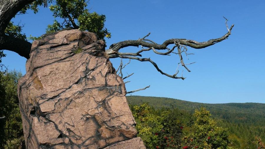 Vlčí kámen | Krušnohorci