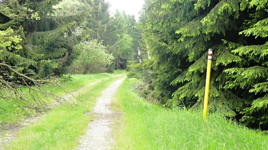 Krátká cesta směrem k přehradě (červená turistická značka)