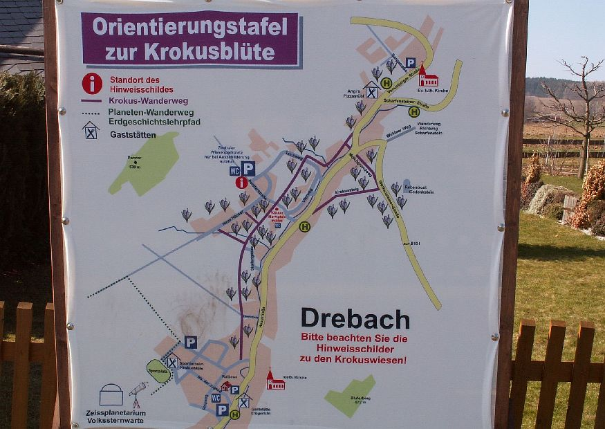 Orientační mapka obce s vyznačenými loukami s kvetoucími krokusy | Drebach
