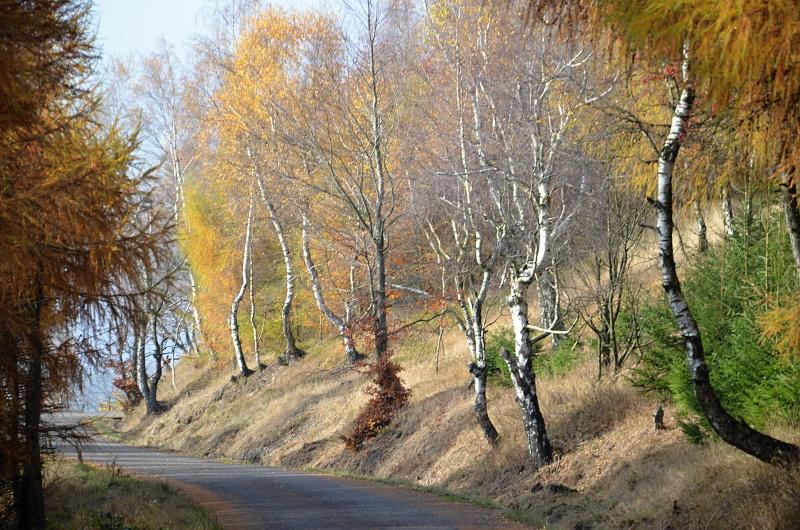 Sedmihůrská cesta má kvalitní asfaltový povrch | Krušnohorci