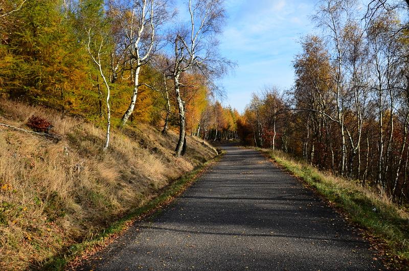 Barvy podzimu na Sedmihůrské cestě | Krušnohorci