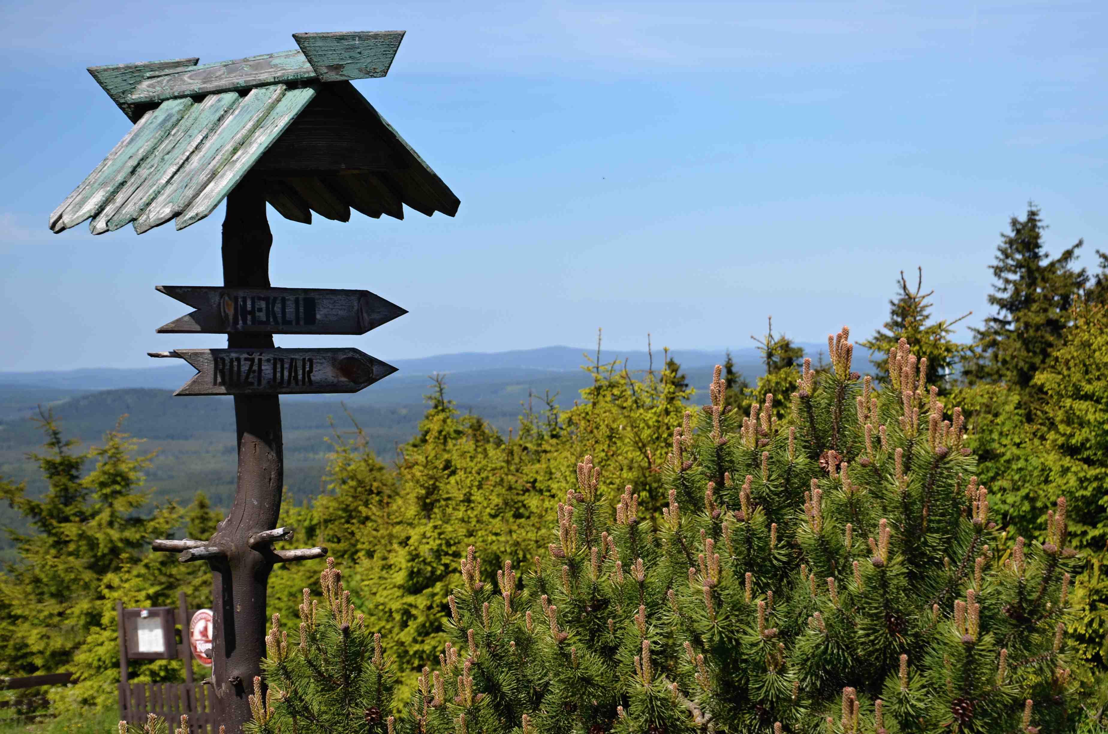 Příroda na Klínovci | Krušnohorci