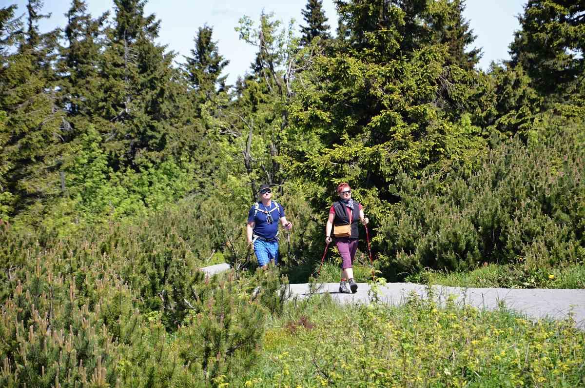 Nordic Walking na Klínovci | Krušnohorci