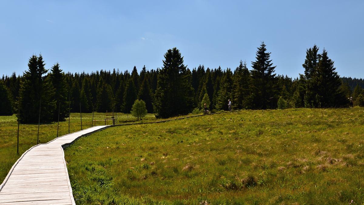 Božídarské rašeliniště   Krušnohorci