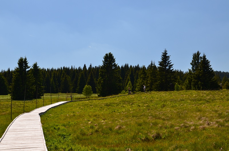 Krušné hory dnes | Krušnohorci