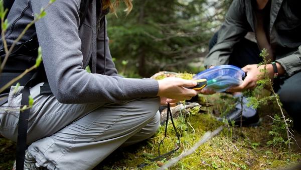 Geocaching v Krušných horách