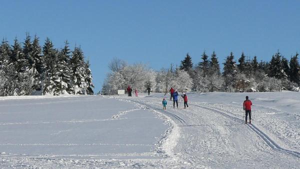 Běžkařům se na Karlovarsku nabízejí společné výlety