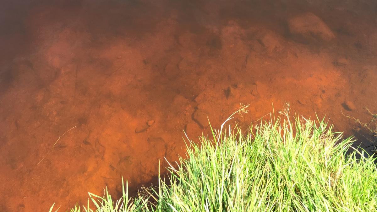 Charakteristická barva vody, Dlouhý rybník | Krušnohorci