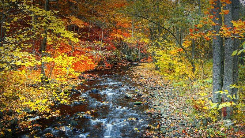 Bezručovo údolí na podzim