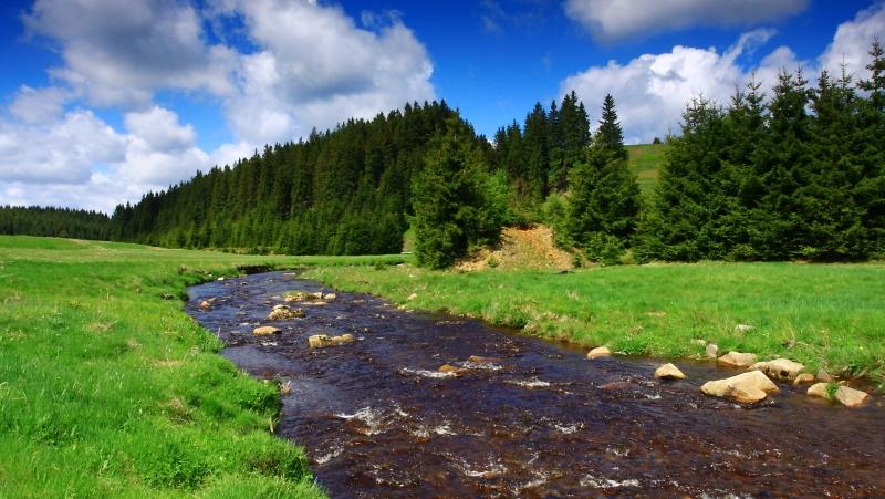 Údolí Černé vody