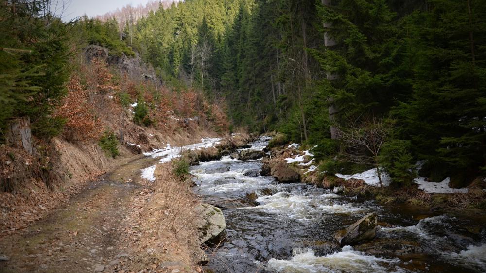 Prunéřovské údolí | Krušnohorci