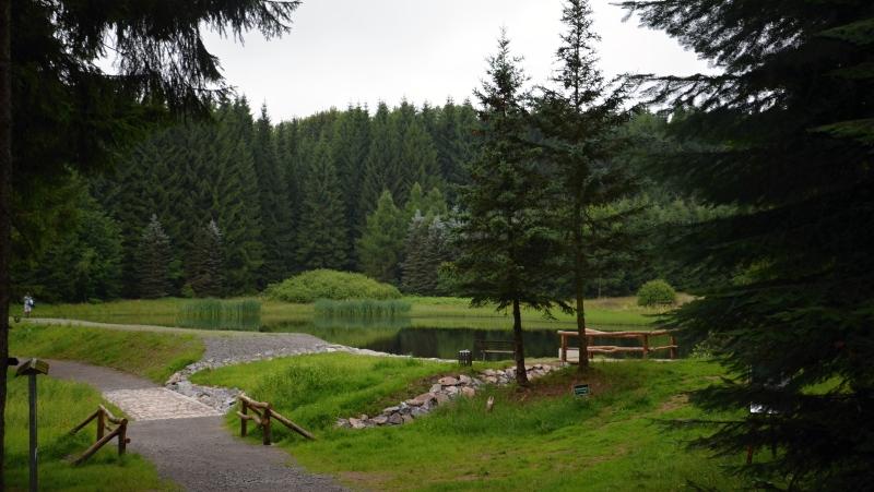 Lesní jezírko a hornická štola Michaelis