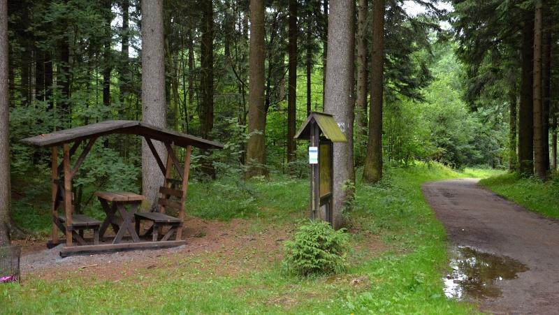 Lesní idylka | Krušnohorci