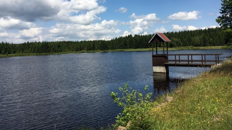 Hráz Starého rybníka