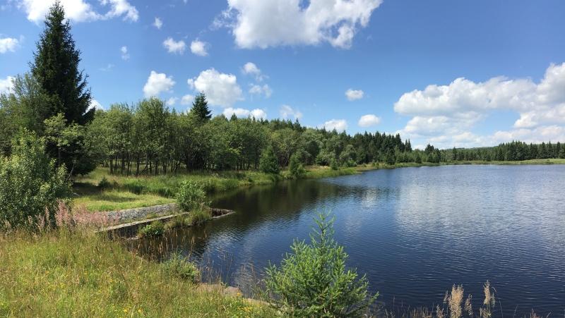Starý rybník | Krušnohorci