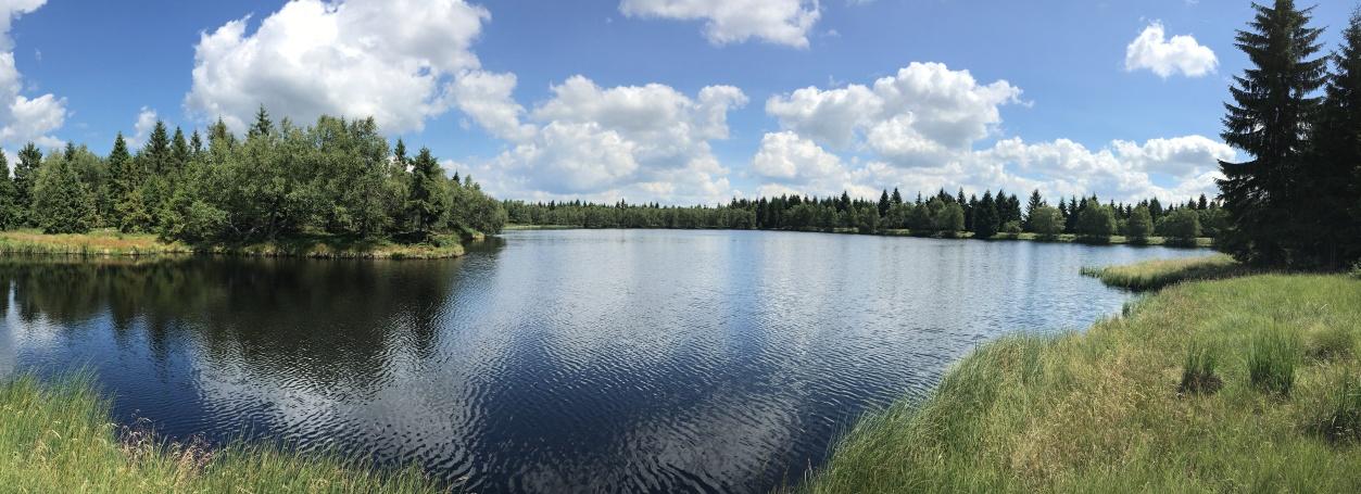 Nový rybník | Krušnohorci