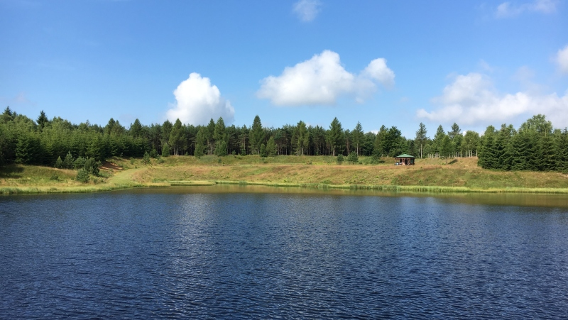Volárenský rybník - oáza s altánkem