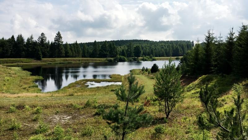 Volárenský rybník | Krušnohorci