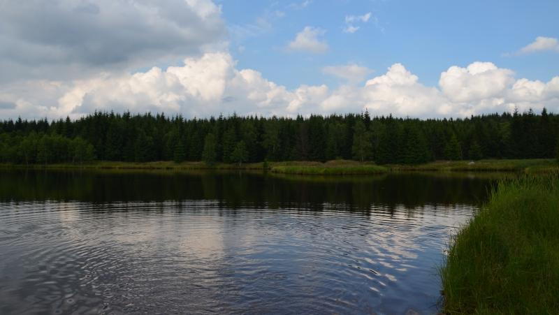 Rudolický rybník | Krušnohorci