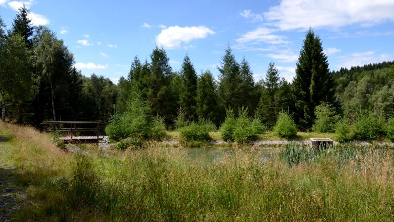Tři rybníčky | Krušnohorci