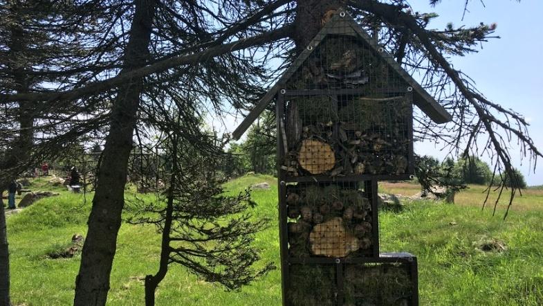 Hmyzí hotel | Krušnohorci