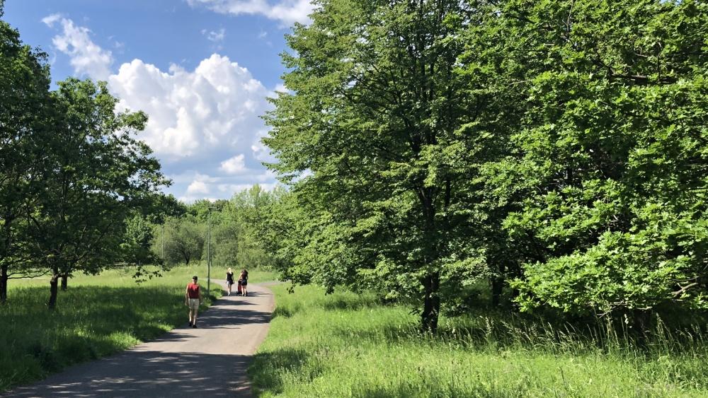 Park Šibeník