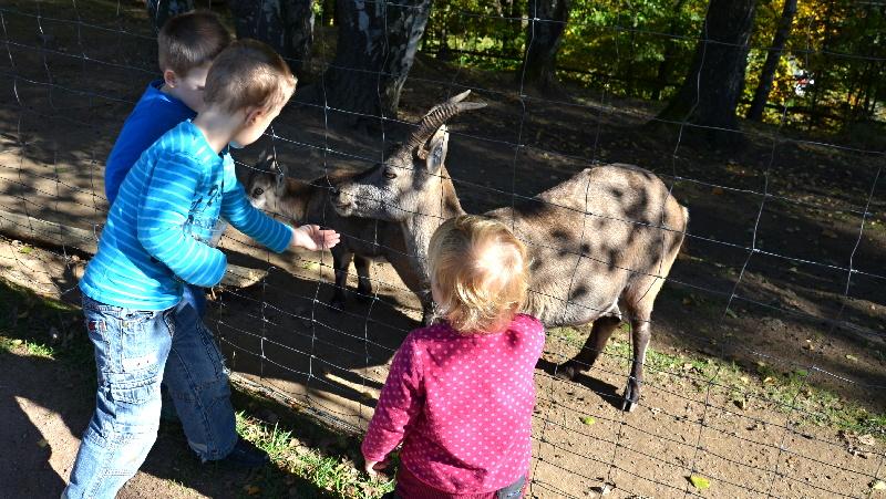 Zoopark Wildpark Geising