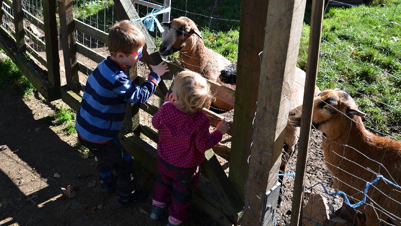 Zoopark Wildpark Geising | Krušnohorci