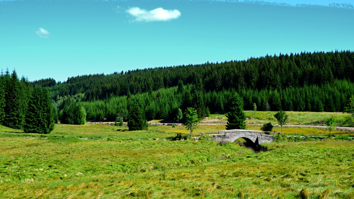 Schwarzwassertal | Krušnohorci