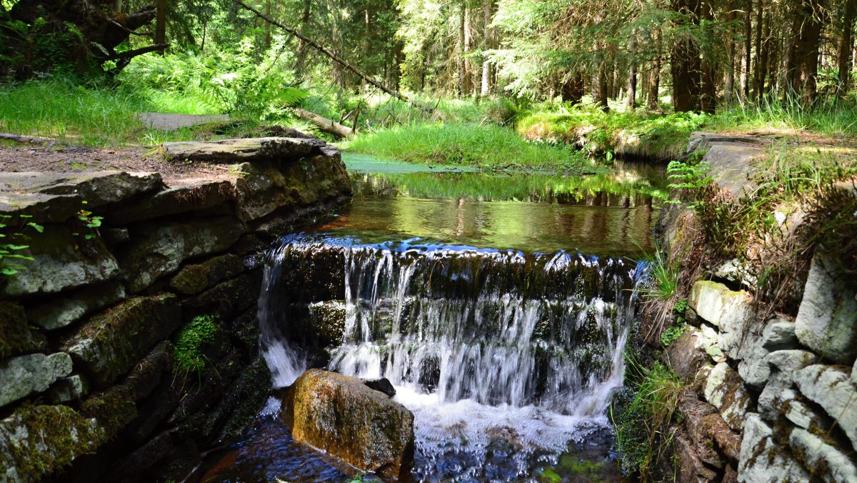 Schwarzwassertal   Krušnohorci