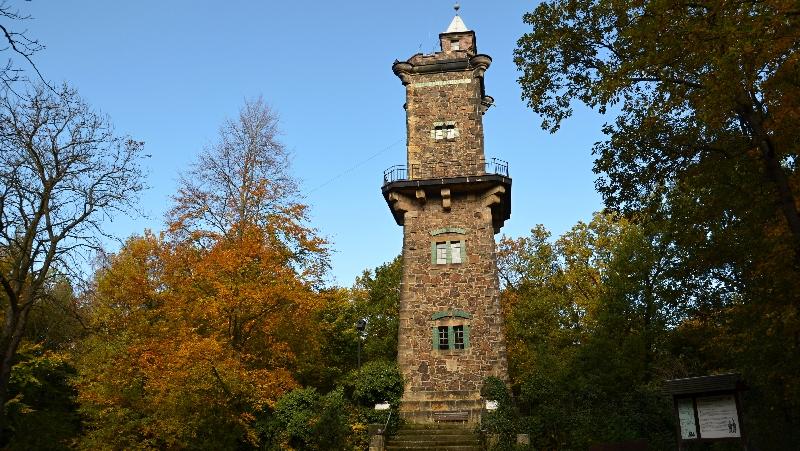 Rozhledna a lesy Bismarckturm Panoramahöhe Bad Gottleuba