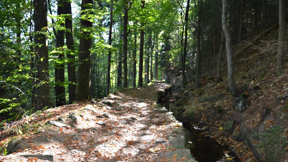 Cesta podél Grüner Graben | Krušnohorci