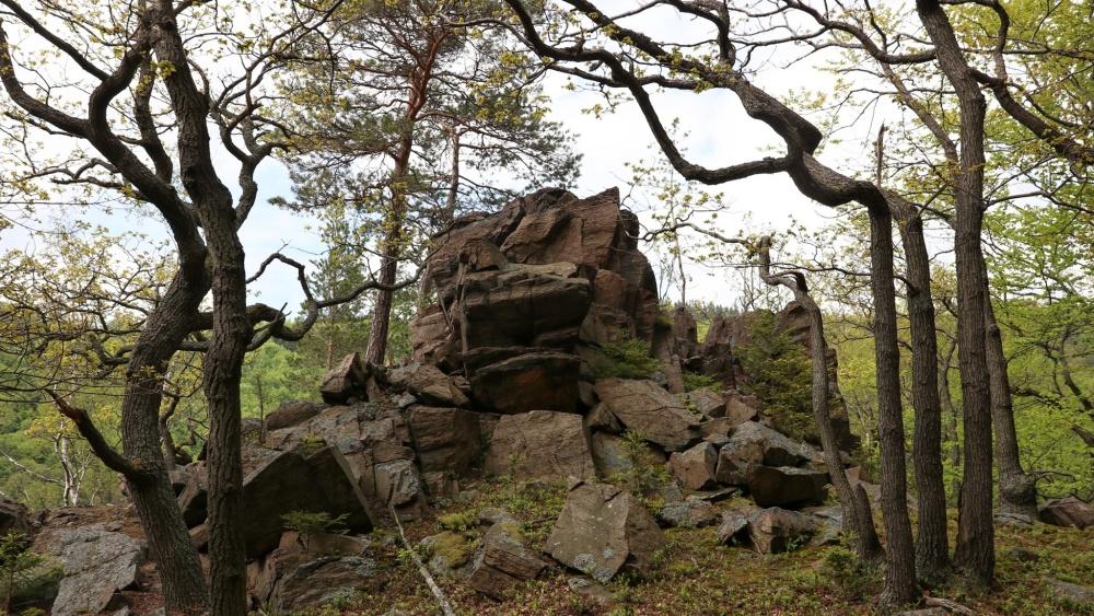 Přírodní památka Kokrháč