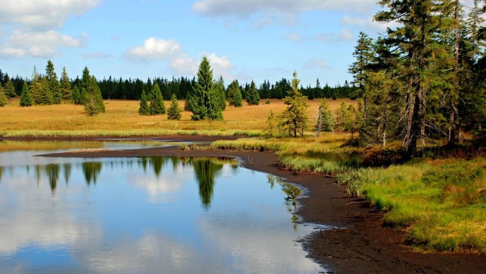 Mrtvý rybník | Karolína Endrštová