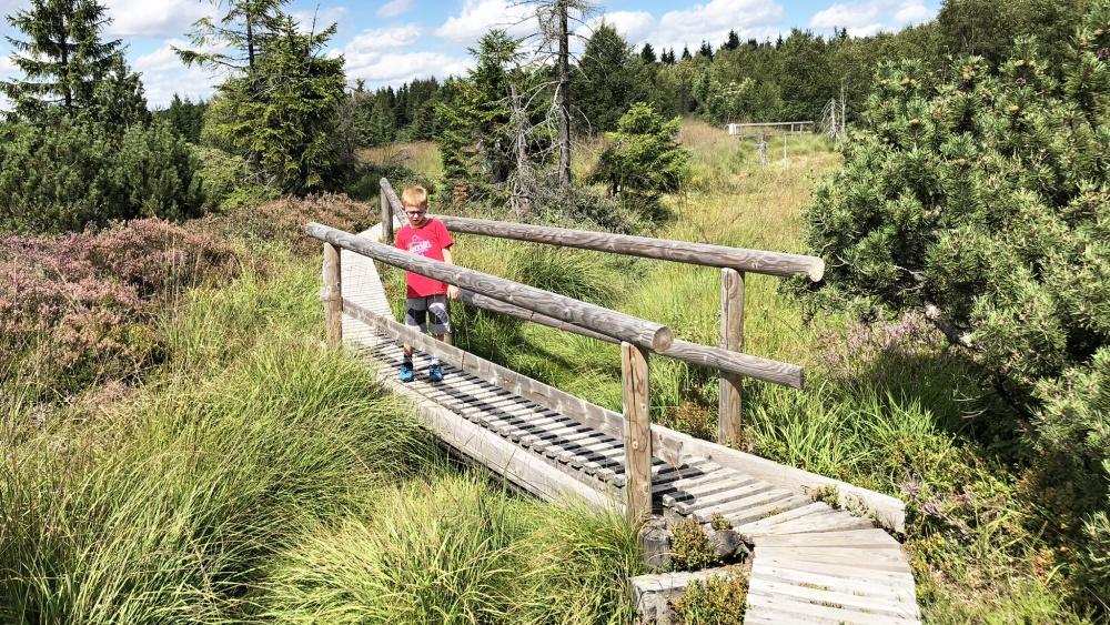 Georgenfeldské horské rašeliniště | Krušnohorci