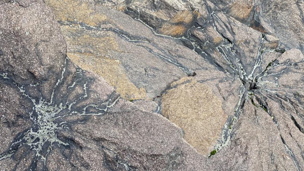 Kamenná slunce | Krušnohorci