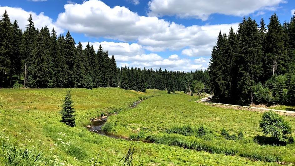Dovolená v Krušných horách: zájemců bude hodně, míst málo.