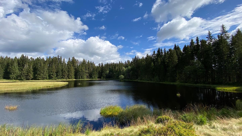 Rolavský rybník | Krušnohorci