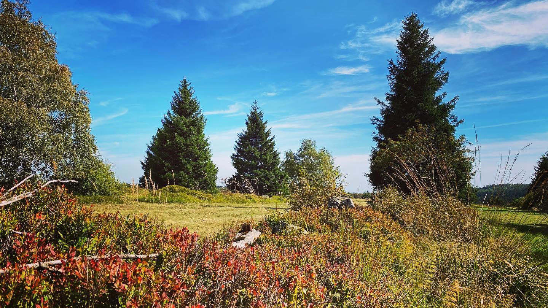 Podzimní výlety do Krušných hor  |  Krušnohorci