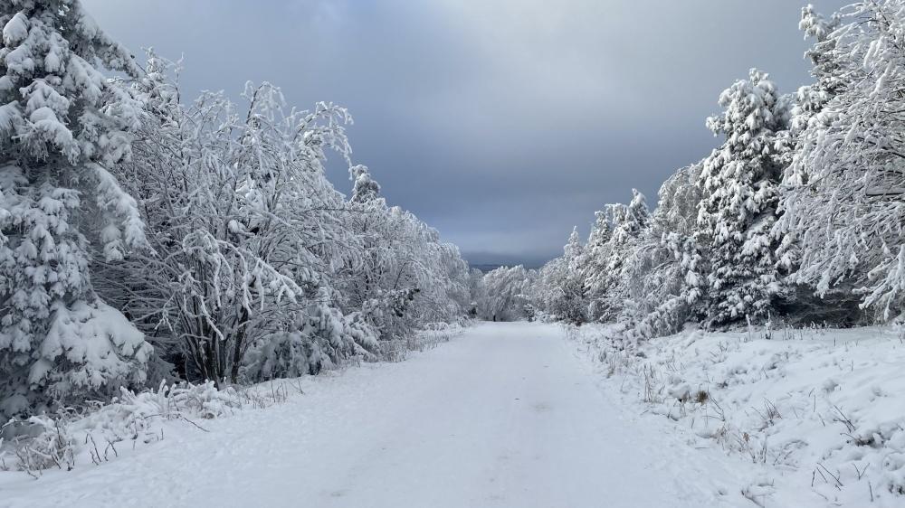 Bobování na Bouřňáku, pěkně zasněžená je i silnice k vrcholu | Krušnohorci