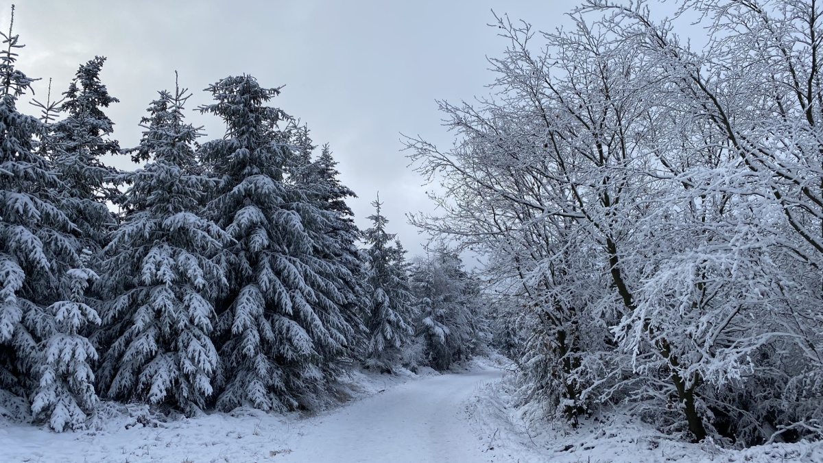 Na Pramenáč to jde i v zimě | Krušnohorci