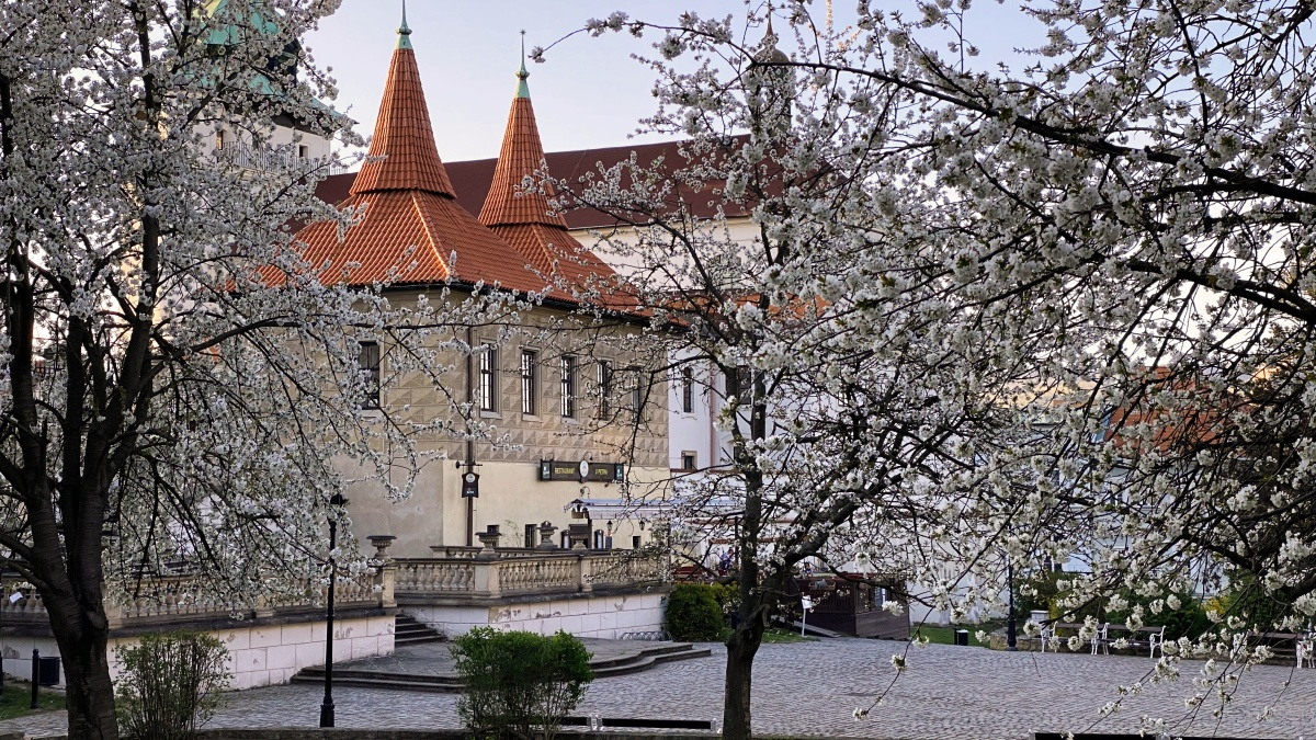 Zámecká zahrada   Krušnohorci