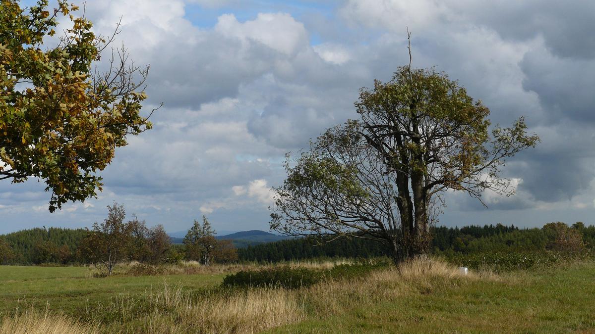 Cestou ke Kohlhaukuppe | Krušnohorci